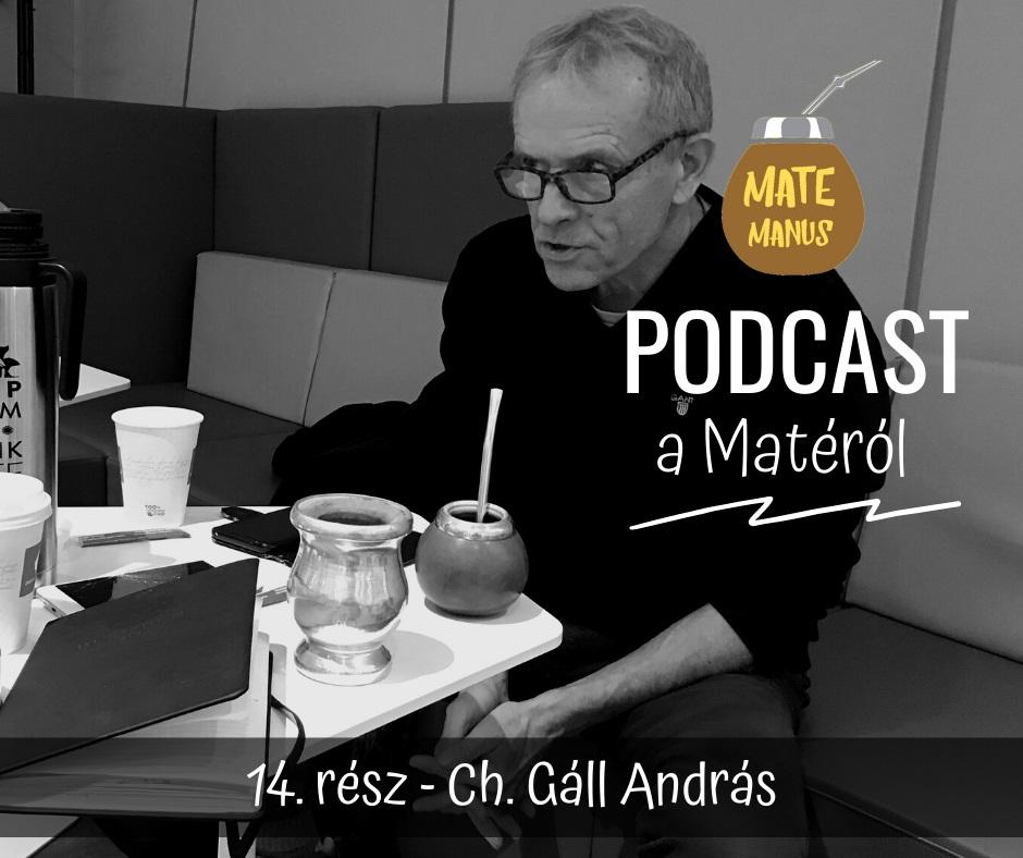 Ch. Gáll Andrással sportújságíró nagymesterrel matéztam - Mate Manus Podcast 14. rész